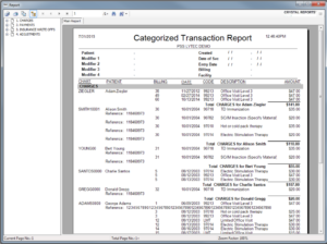 Categorized Transaction Journal