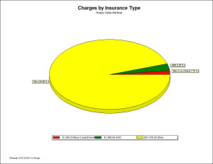 Charges by Insurance Type - Chart Report