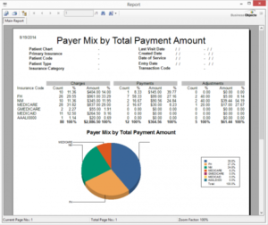 Payer Mix by Payment 2
