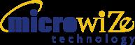 Microwize Logo-PNG